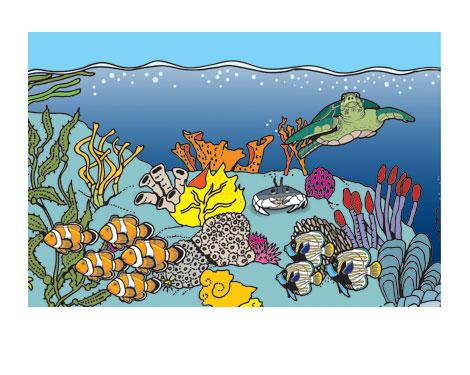 food web ocean. Ocean Habitat
